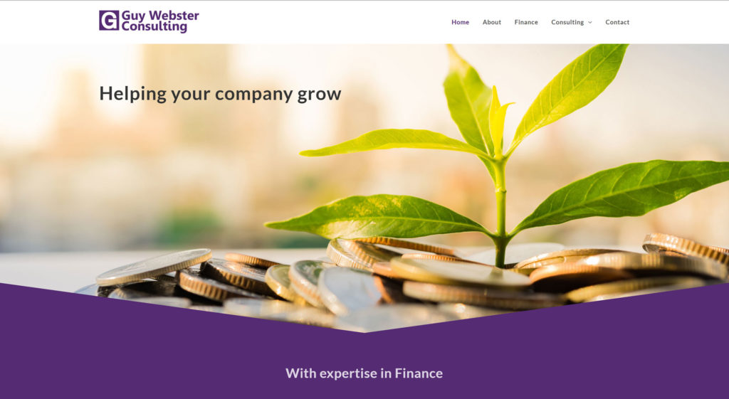 Guy Webster Consulting Website Design & Build